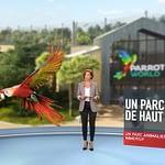 Le 1245 de M6 à Parrot World