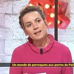 La Quotidienne de France 5 à Parrot World